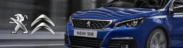 Peugeot - Citroen Çıkma ve Yeni Yedek Parça